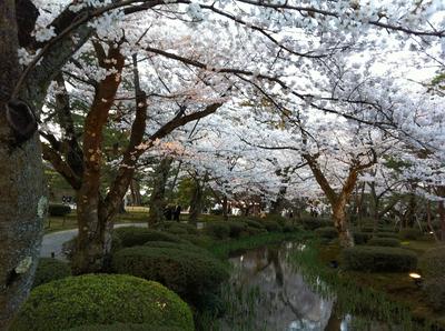 20120416兼六園_4155tone1000.jpg