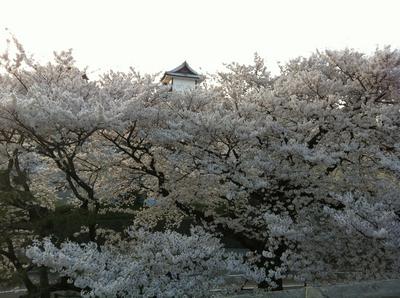 20120416石川門_4126tone1000.jpg