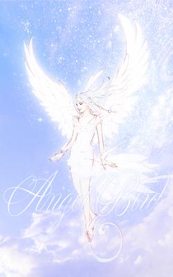 Angelbird_20150822_Kindle_800.jpg
