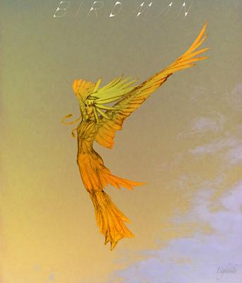 BirdMan_07t600.jpg