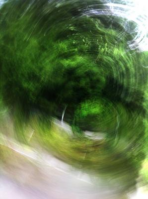 GreenRotation1_1000.jpg