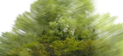 緑風3_700.jpg