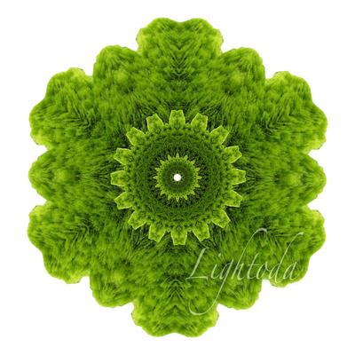 GreenGear_t1000.jpg
