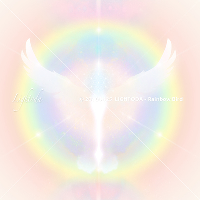 RainbowBird_T600.jpg